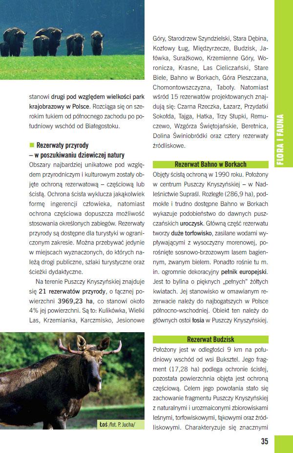 Przyroda Puszczy Knyszyńskiej